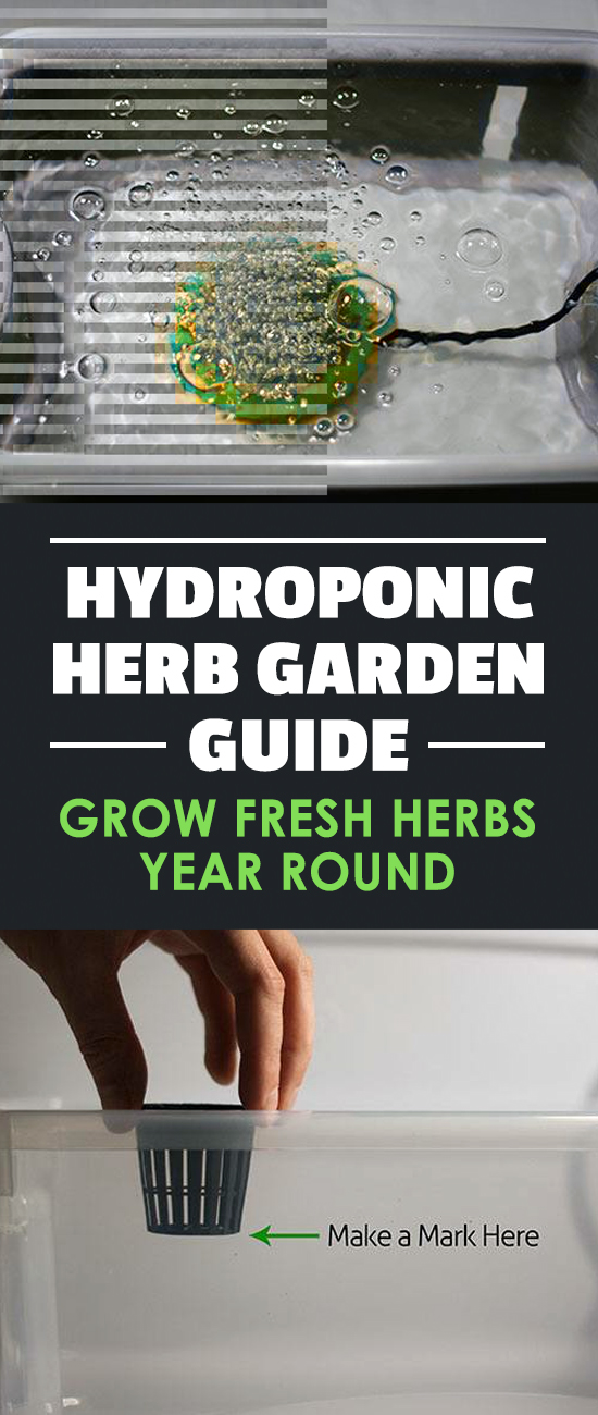 Learn How To Build An Indoor Hydroponic Herb Garden. Includes A Parts List  And A