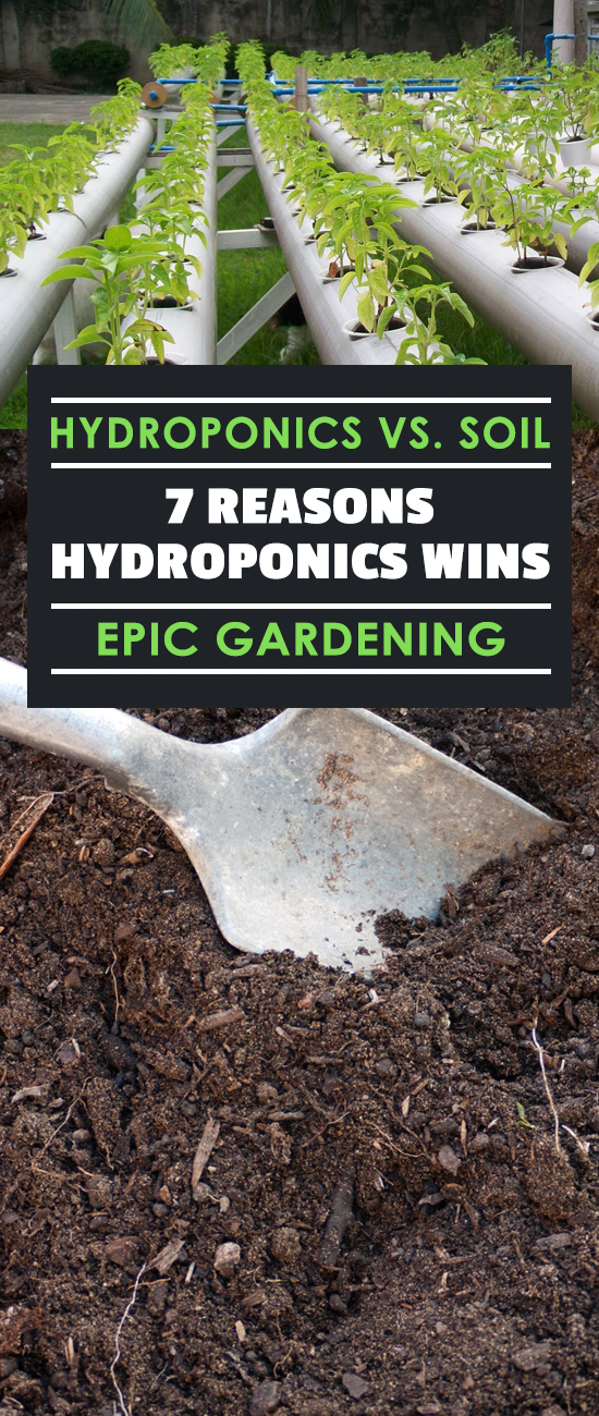 Hydroponics vs. Soil: 7 Reasons Hydroponics Wins | Epic ...