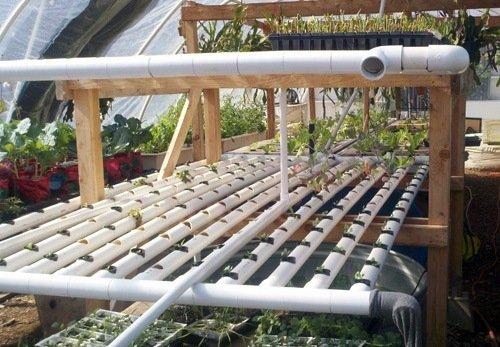 xPonics Urban Farm Tours: New Roots Aqua Farm | Epic Gardening