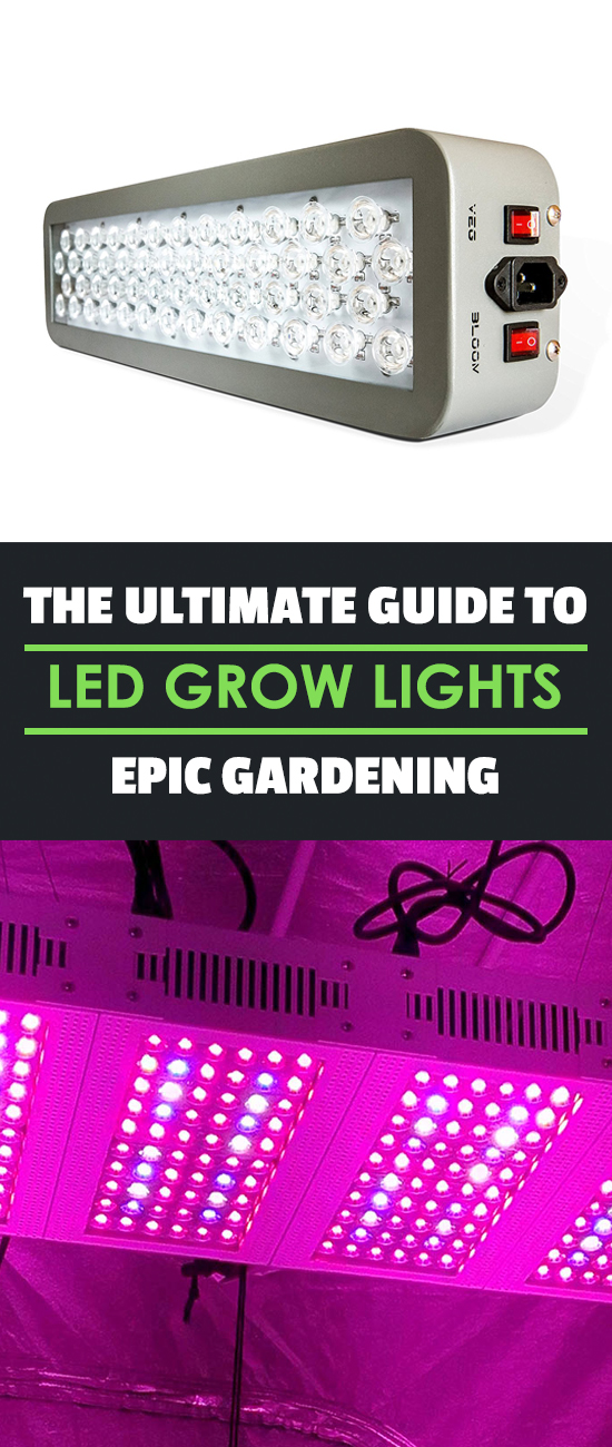Learn if the hype about LED grow lights is justified in this guide to see if work for hydroponics and if you should invest in them for your hydroponic garden.