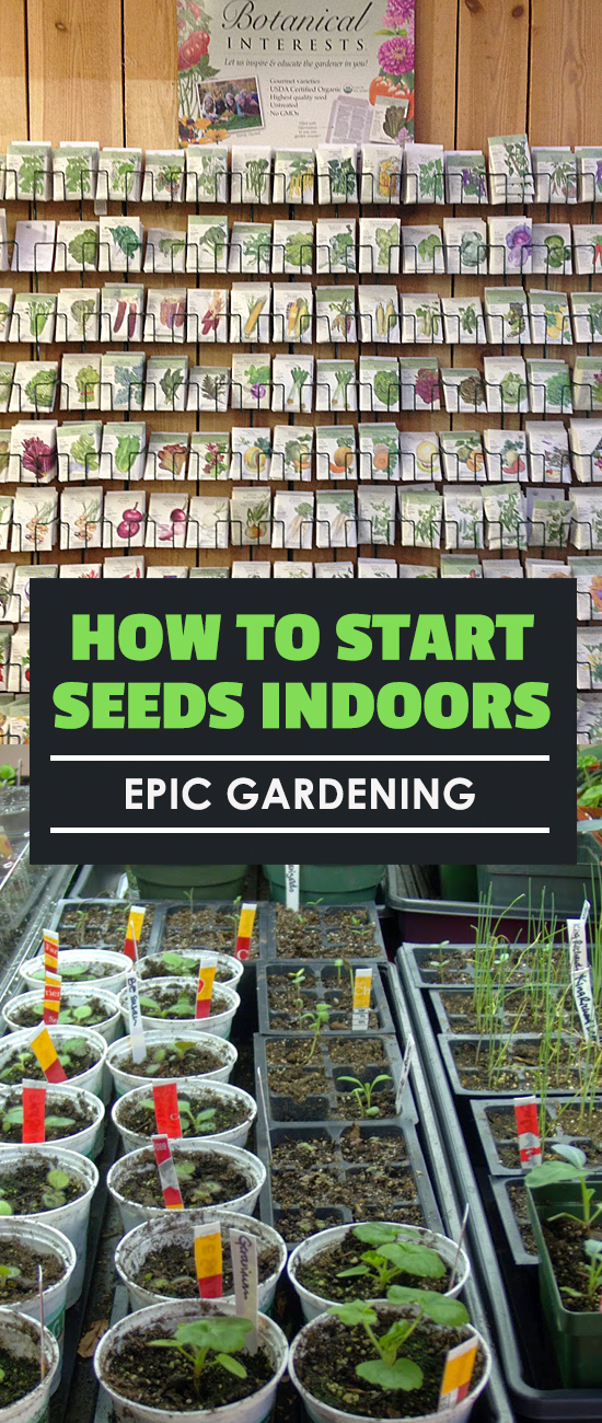 Learn how to start seeds indoors and get a head start on the growing season...or actually keep your plants indoors the entire season!
