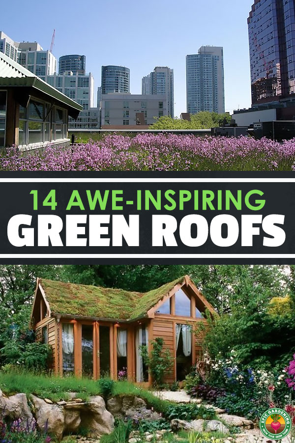 Looking to spice up your home with some natural decor?  Why not a green roof?  Homeowners, governments, and companies all over the world are starting to embrace the green roof movement.  Here are 14 pictures to inspire you to design your own green roof project.