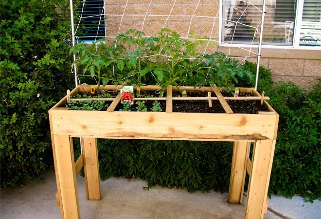 square foot gardening square foot gardens where efficiency meets epic 29212