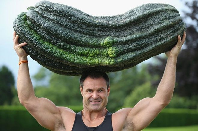 giant-cucumber-two