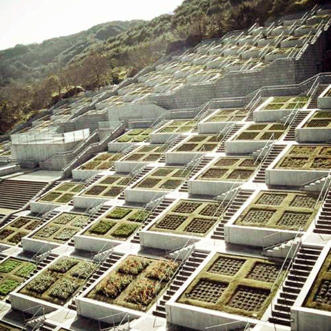 Geometric Green Roofs