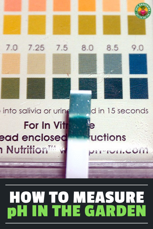 Tracking the pH of your garden is the key to a good harvest. Read my in-depth reviews of the best digital pH meters, testing kits, and accessories.
