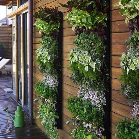 Banded Vertical Garden