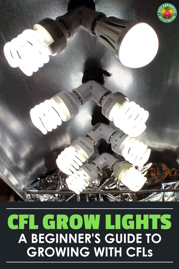 Using a CFL grow light is a great way to get started growing indoors. Learn everything you need to know about CFL grow light setup, bulbs, and fixtures.