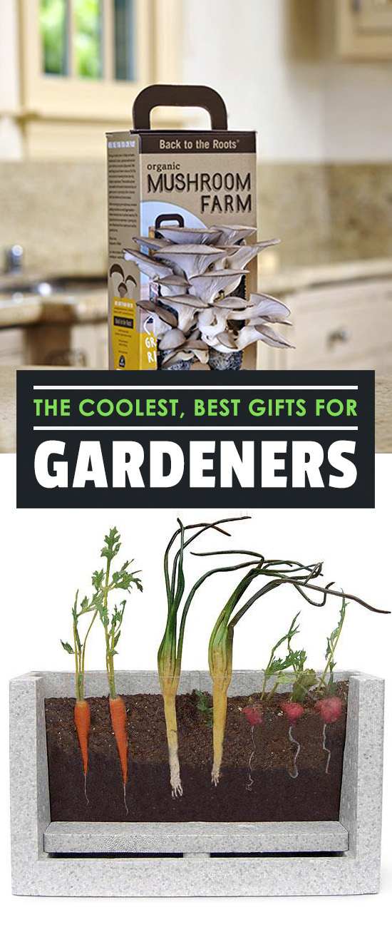 The Coolest, Best Gifts for Gardeners