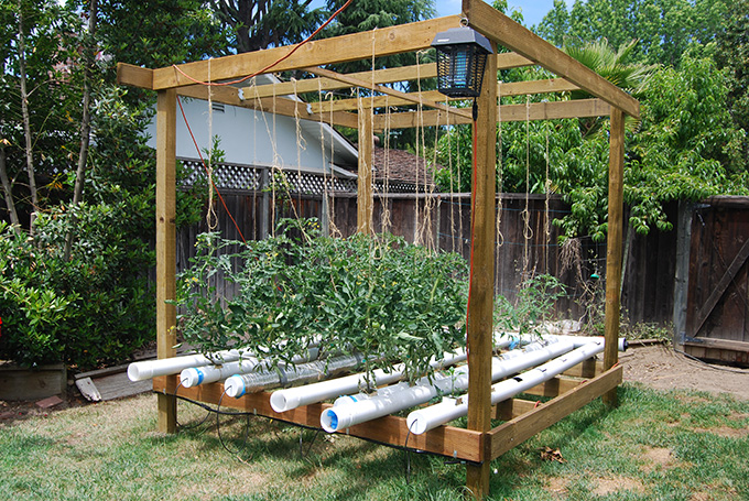 5 Creative Vegetable Garden Ideas