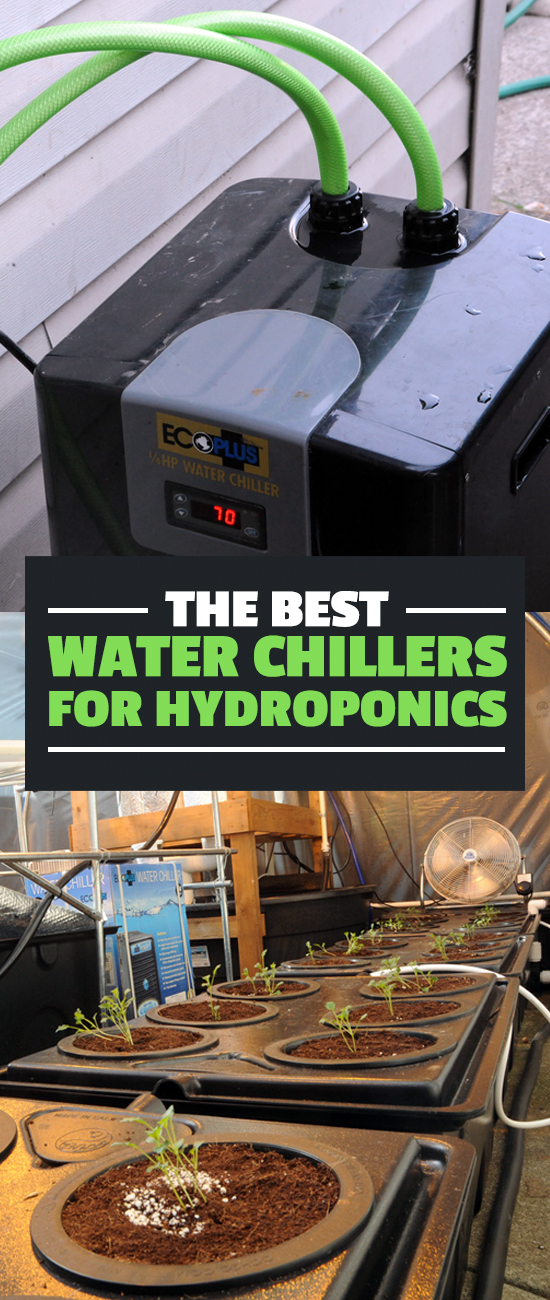 Figuring out the best water chillers for hydroponics was a challenge because there's so little information out there, but after deep research, here's what I know.