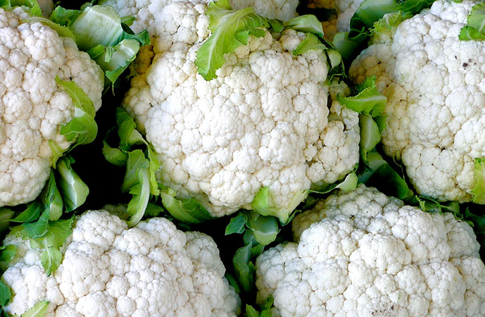 Fall Cauliflower