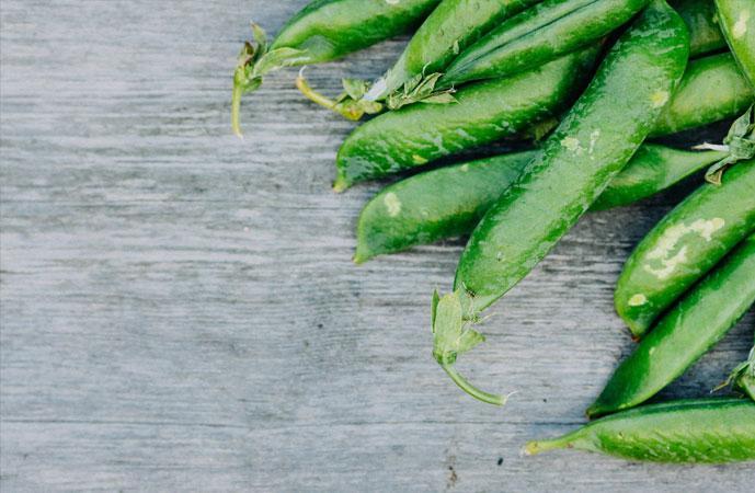 Fall Peas