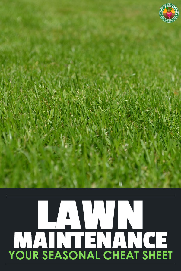 Lawn maintenance doesn\'t just happen in spring and summer — it\'s a year-round process. Here\'s a cheat-sheet for what to do in every season of the year.
