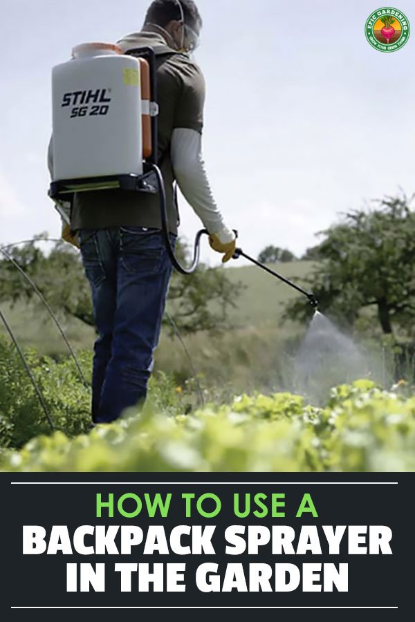 Backpack sprayers are a necessary evil when battling pests, diseases, or fertilizing in the yard or garden. The best backpack sprayers blend features and price.