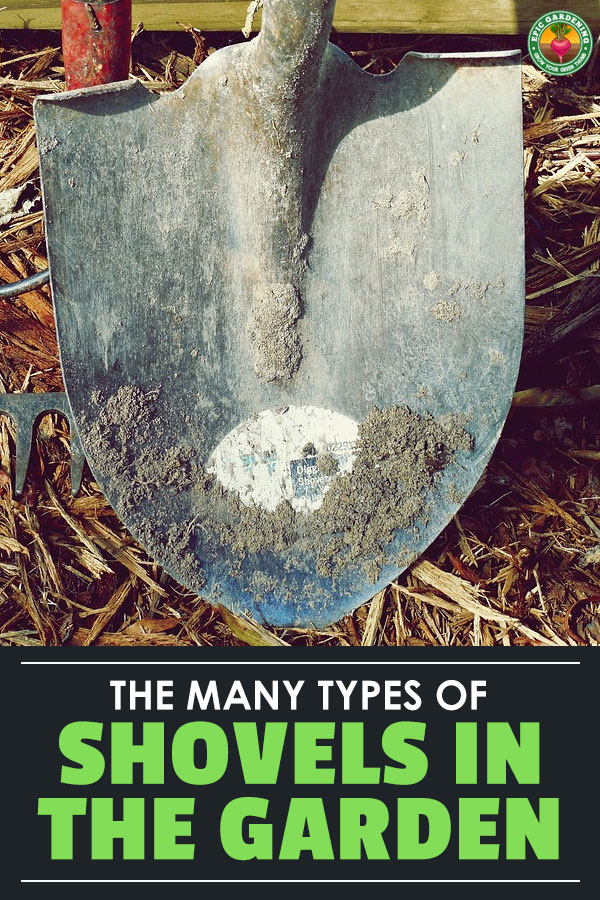 The best shovel for you will depend on your needs. Do you need to dig a trench, a hole, edge a lawn...the list goes on. Check out our shovel buyer's guide.