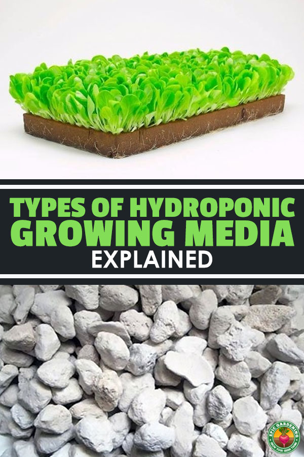 The Only Hydroponic Growing Media Guide You Need
