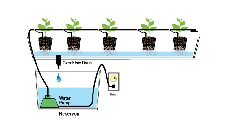 Image result for hydroponic systems