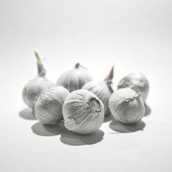 Making garlic spray
