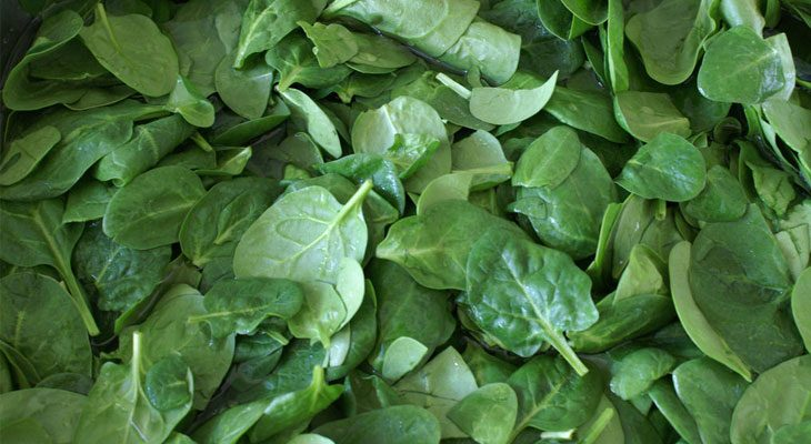 August Spinach