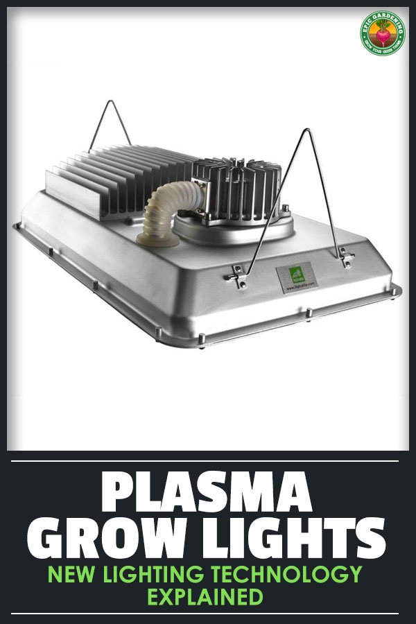 Plasma grow lights are the new hot indoor lighting product. Are they worth the money? Find out in this in-depth plasma light review.