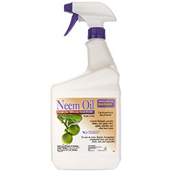 Neem Oil for Grasshoppers