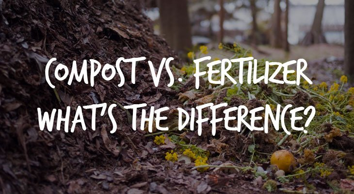 Compost vs. Fertilizer