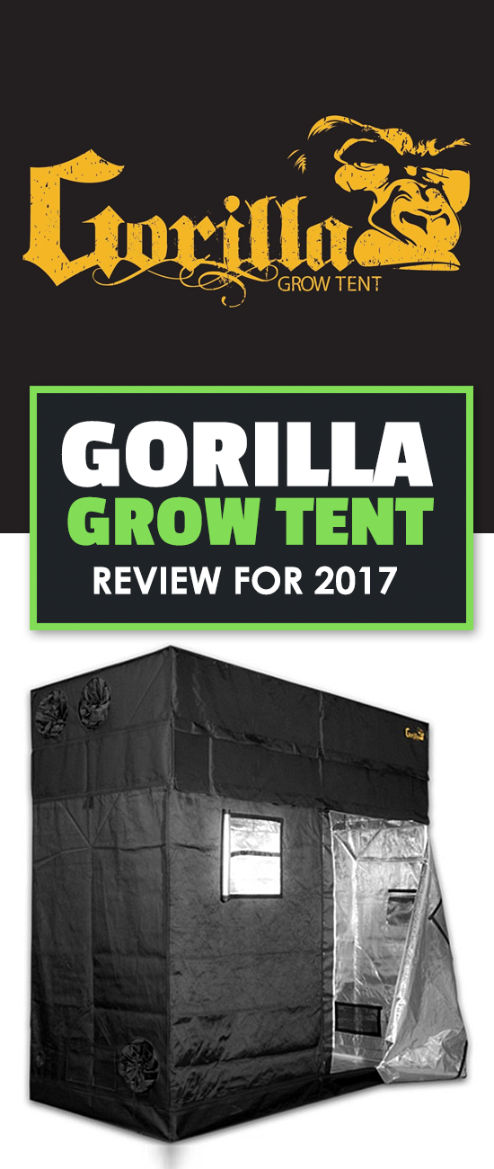 Buying a grow tent is a big and confusing decision. This Gorilla grow tent review shines some light on one of the most popular tent makers out there.