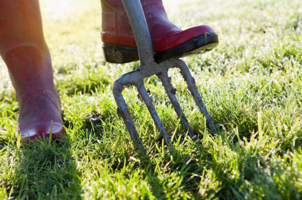 Awesome A Spike Aerator (or Garden Fork) Doing Work On The Lawn. Source