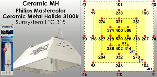 Ceramic Metal Halide Lights Explained: What They Are And How