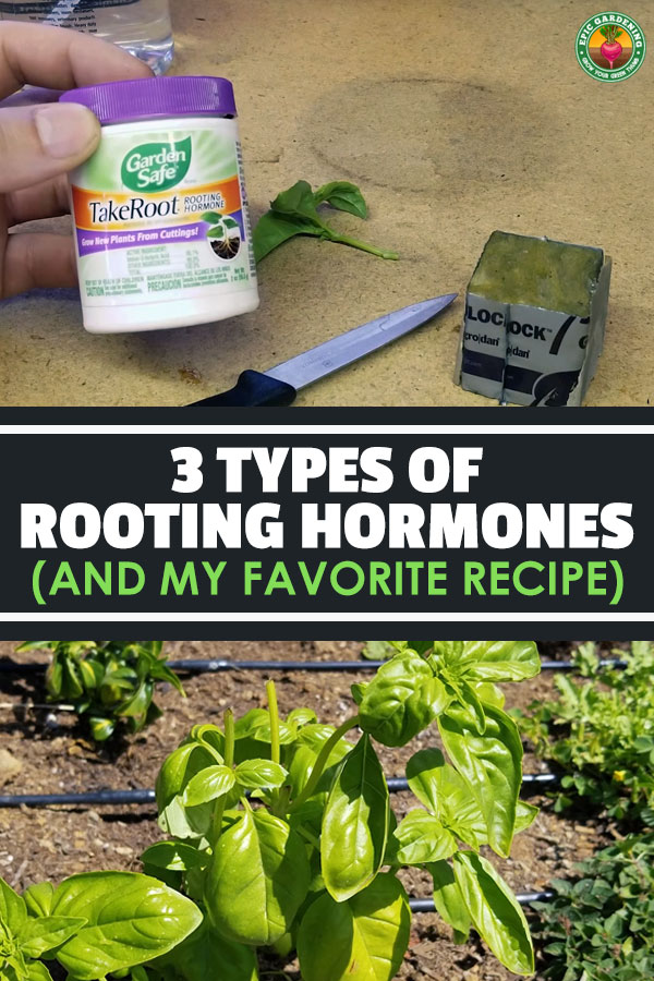 If you\'re not using a rooting hormone to propagate your cuttings, why not? The best rooting hormones will drastically increase your propagation success.