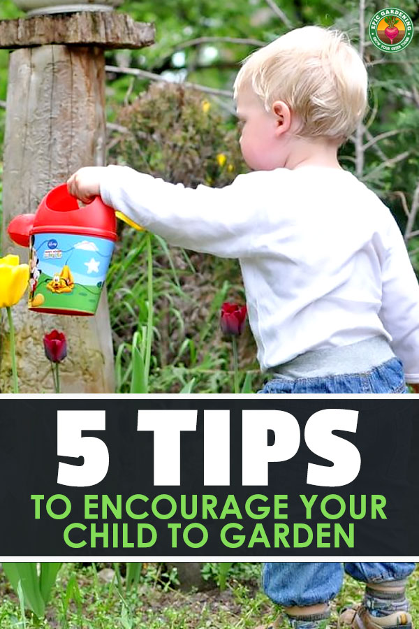 It's hard to get your kids in the garden when video games and air conditioning exist. These 5 gardening tips for kids can help you encourage them.