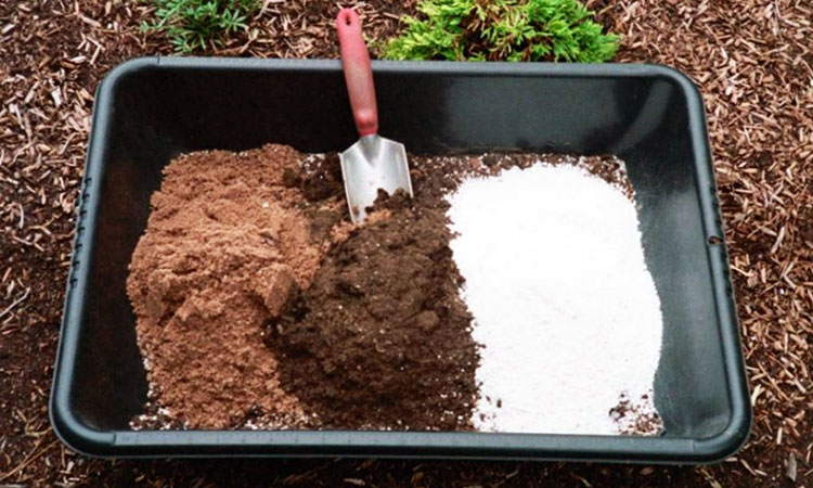 Perlite in potting mix