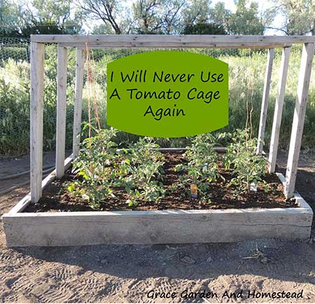 The Bailing Twine Tomato Bed