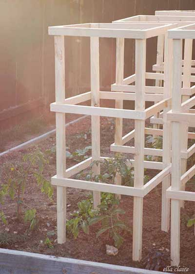 The Wooden Tomato Cage
