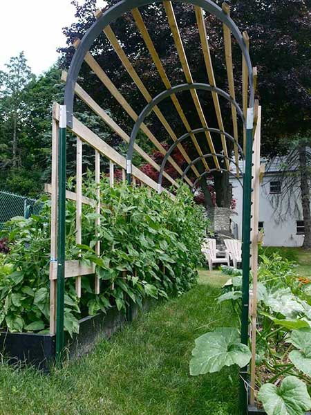Arched Walkway Trellis
