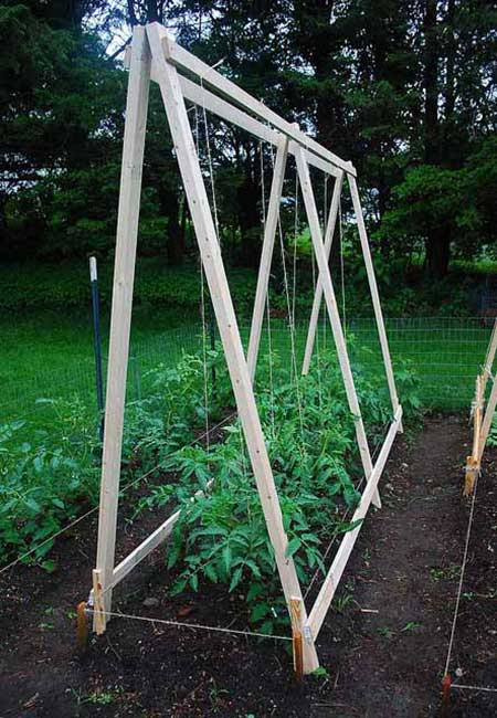 A Triad Of Trellises