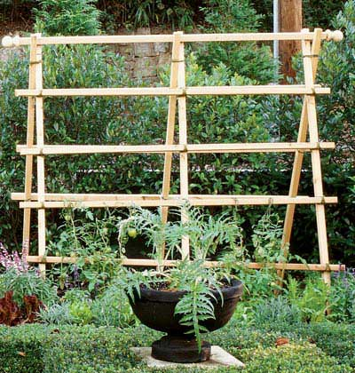 Three-Step Trellis