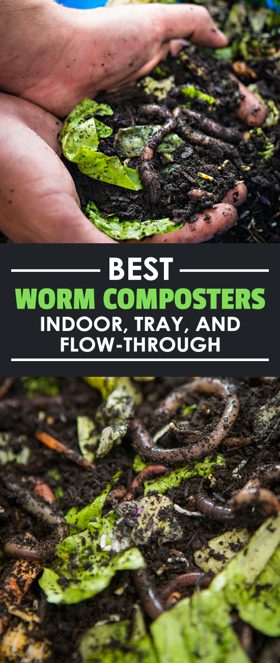 Most gardeners know what worm casting are, but have you gotten into vermicomposting? Learn the best worm composters on the market + how to choose one.