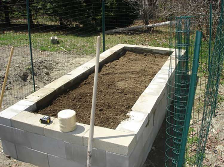 Concrete Vegetable Garden