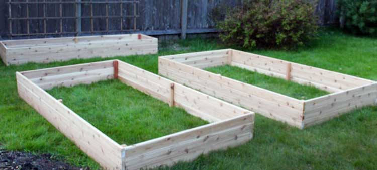 Merveilleux DIY Basic Raised Beds