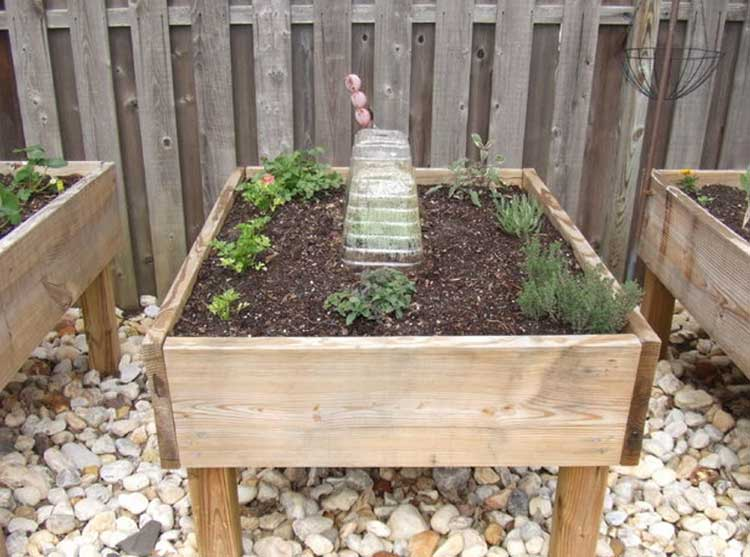 Leggy Raised Garden Bed