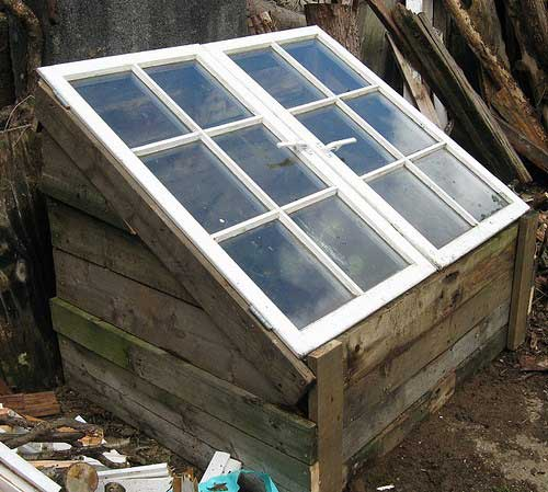 Pallet and Window Cold Frame