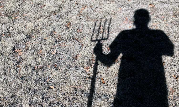 Digging Fork Decisions