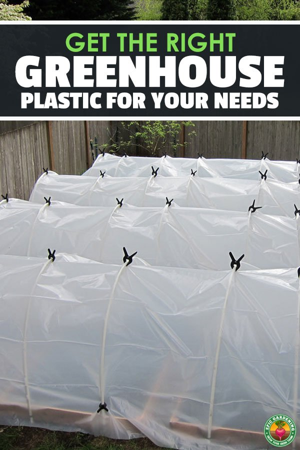 So you\'re building a greenhouse, but don\'t know what greenhouse plastic to use. Come read all you need to know in our greenhouse film buyer\'s guide!