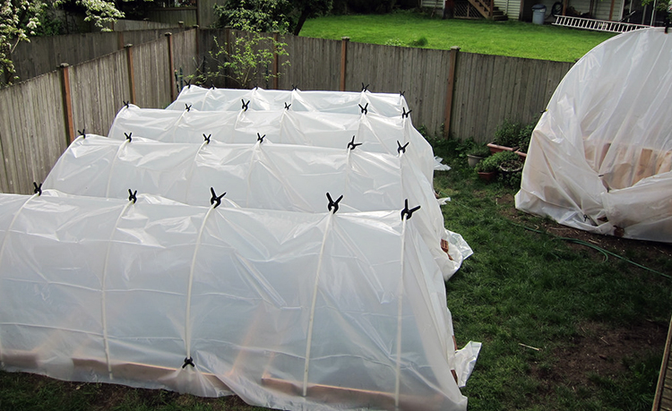 Best Greenhouse Plastic What You Need To Buy To Build