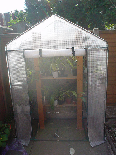 Polyvinyl greenhouse