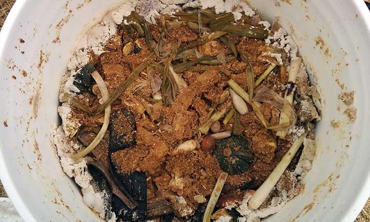 Aged bokashi pre compost