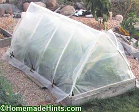 A-Frame PVC Greenhouse