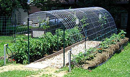 Cattle Panel Hoop Greenhouse